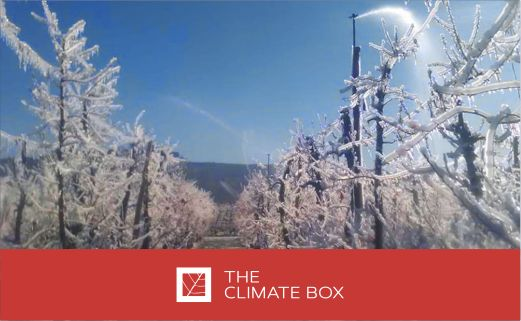 The Climate Box optimizó un sistema de riego